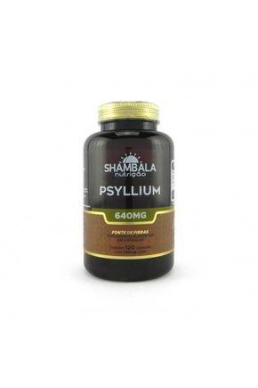 psyllium 120 x 640mg